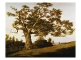 The Charter Oak by Charles de Wolfe Brownell Reproduction procédé giclée par Charles de Wolfe Brownell