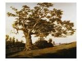 The Charter Oak Giclée-Druck von Charles de Wolfe Brownell