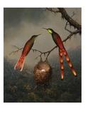 Colibris gardant le nid Reproduction procédé giclée par Martin Johnson Heade