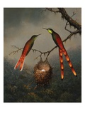 Two Hummingbirds Guarding an Egg Nest Giclee Print by Martin Johnson Heade