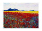 Tulip Field by Gail Wells-Hess Giclee Print by Gail Wells-Hess