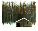 Newfoundland Hunting Camp Photographic Print by Brian Rice