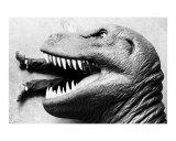 T-rex Photographic Print by John J Robertson