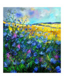 Wild chicorees Giclee Print by Pol Ledent