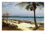 Tropical Coast Premium Giclee Print by Albert Bierstadt