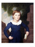 Portrait of a Boy, American School, Mid 19th Century Prints