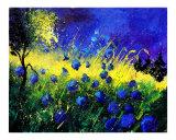 Blue cornflowers Giclee Print by Pol Ledent