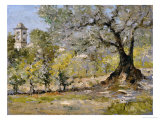 Olive Trees in Florence Premium Giclee Print by William Merritt Chase