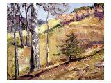 Spring Hillside Giclee Print by George Gardner Symons