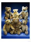A Collection of Steiff Teddy Bears Giclée-tryk af Steiff