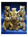 A Collection of Steiff Teddy Bears Giclee Print by  Steiff