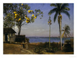 Tropical Scene Prints by Albert Bierstadt
