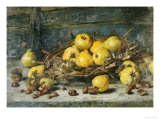 A Basket of Pears with Chestnuts, 1894 Giclee Print by Eugeen Joors