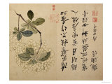 Hortensias Lámina giclée por Yun Shouping