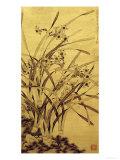 Narcisos Impressão giclée por Ma Shouzhen