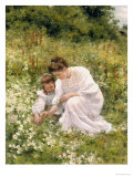Picking Daisies, 1905 Giclee Print by Hermann Seeger
