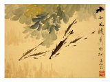 Fish, A Leaf from an Album of Various Subjects Giclee Print by Xu Gu