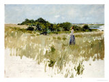 Shinnecock Hills (A View of Shinnecock), 1891 Giclee Print by William Merritt Chase