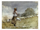 Tending Sheep, Houghton Farm Giclee Print by Winslow Homer