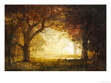 Forest Sunrise Prints by Albert Bierstadt