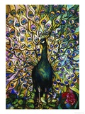 Fine Peacock Leaded Glass Domestic Window Poster by  Tiffany Studios