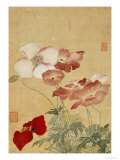 Poppies Premium Giclee Print by Yun Shouping