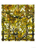 Trumpet Vine Leaded Glass Window Giclee Print by Tiffany Studios 