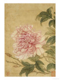Peony Poster von Yun Shouping