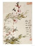 Willow and Peach Blossoms Premium Giclee Print by Li Shan
