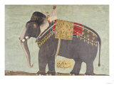 "Portrait of the Elephant ""Alam-Guman Gajraj"", circa 1650 Giclee Print"