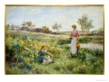 Summer Flowers, 1903 Giclee Print by Alfred Augustus Glendening