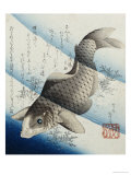 Carp Among Aquatic Leaves Premium Giclee Print by Katsushika Taito II