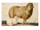 A Ewe and Her Lamb, circa 1850 Giclee Print by Abu'l-hasan Ghaffari Kashani