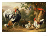 Poultry and Other Birds in the Garden of a Mansion Print by Jacob Bogdany