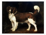 A Spaniel in a Landscape, 1784 Print by George Stubbs