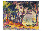 The Pine Wood (Provence), 1906 Giclee Print by Henri Edmond Cross