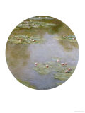Waterlilies, Nympheas Giclee Print by Claude Monet
