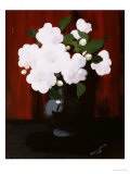 White Camelias Prints by James Stuart Park