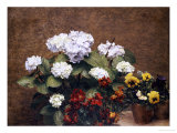 Hydrangeas, Wallflowers and Two Pots of Pansies, 1879 Premium Giclee Print by Henri Fantin-Latour