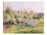 Apple Trees in Blossom, Eragny, 1895 Print by Camille Pissarro