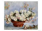 Crisantemos Lámina giclée por Claude Monet