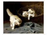 White Angora Kittens with a Beetle Giclee Print by Arthur Heyer