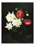 Red and White Dahlias Giclee Print by James Stuart Park