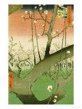 Plum Garden, Kameido Poster by Ando Hiroshige
