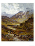 Longhorn Cattle in a Mountainous Landscape, 1892 Giclee Print by Alfred Augustus Glendening