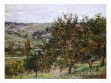 Apple Trees Near Vetheuil Reproduction procédé giclée par Claude Monet