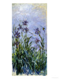 Iris Mauves, 1914-1917 Giclee Print by Claude Monet