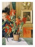 Brita's Cactus, 1904 Print by Carl Larsson