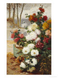 Chrysanthemums in a Walled Garden Giclee Print by Eugene Henri Chuchois