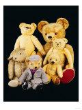 A Selection of Teddy Bears Giclee Print
